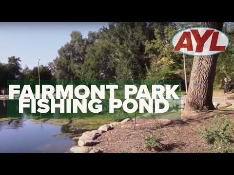 Fairmont Park Fishing Pond 2019