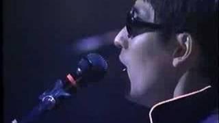 ホフディラン LIVE AT BUDOKAN - 昨日の夜は・・・