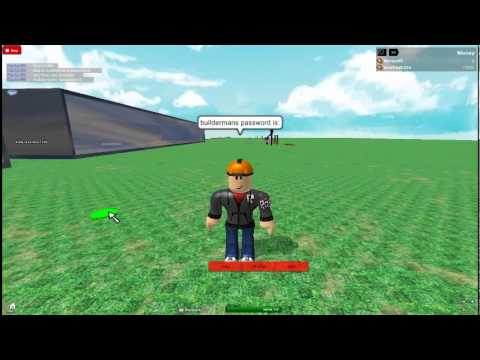 For list of current and former promo codes, see List of promotional codes.. On Roblox, a promotional code or simply promo code is a piece of text that can be redeemed for a special item.