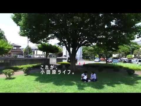 【2017年秋】小田原ライフ体感イベントプロモーション動画