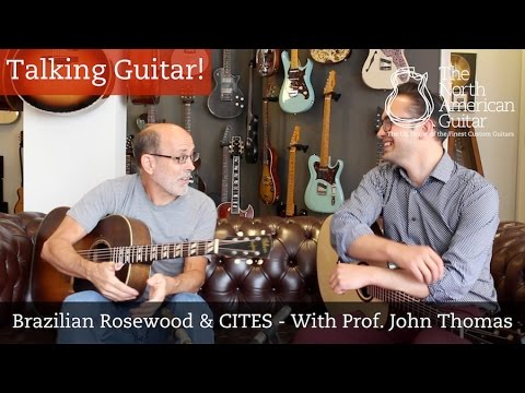 Talking Guitar - Brazilian Rosewood and CITES - With Prof. John Thomas