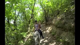 Randonnée Cessous/Saint jean du Gard