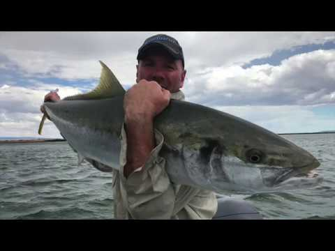Port Augusta Kingfish | Episode 1!