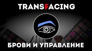 Брови и управление | Трансфейсинг физиогномика | Леонид Золин - 2015