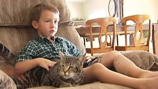VIRAL VIDEO: Cat Saves Bakersfield Boy, Boy Talks About Dog Attack