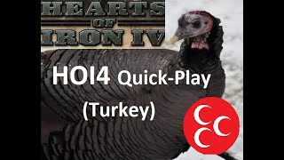 HOI4 Beginners Quick Play Guide (army and government) Turkey