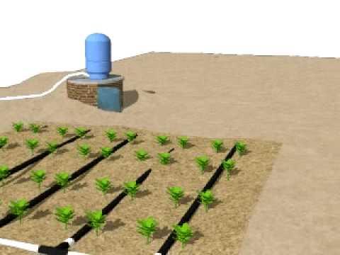 Irrigation Water System (3DDiagram)  YouTube