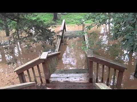Beverly Disney Big Sugar Creek