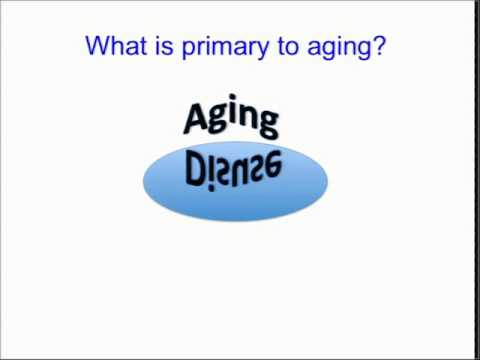 Mitochondrial Energetics in Aging