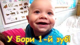 У Бори вылез первый зуб! Будем ли докармливать? (04.18г.) Семья Бровченко.