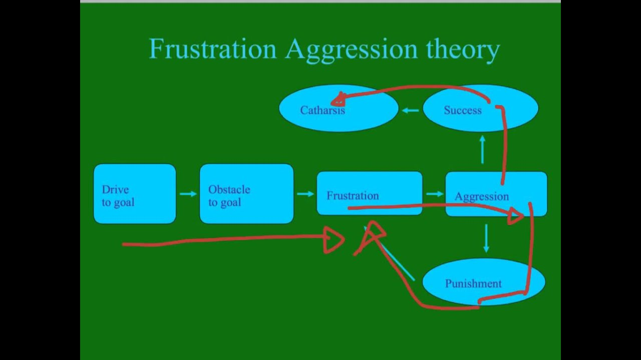 an overview of the theories on human aggression causes What causes these feelings learn about some of the major theories of emotion that psychologists have proposed emotions exert an incredibly powerful force on human behavior strong emotions can cause you to take actions you might not normally perform or to avoid situations you enjoy.