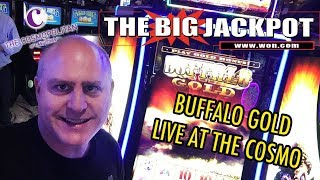 🔴Buffalo Gold Live at the Cosmo💣 | The Big Jackpot