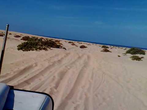 Sand 4x4 Driving Beach Western Sahara Morocco