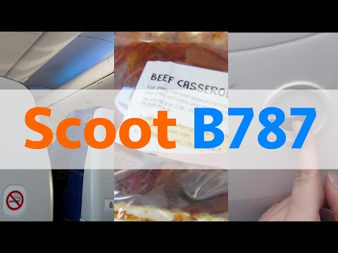 787-9 DREAMLINER! | Scoot | Singapore - Perth | Flight Review