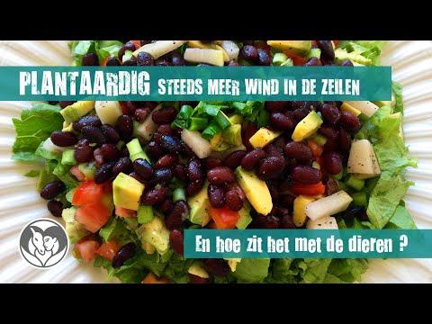 Veganisme heeft alvast de wind in de zeilen !