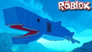 "Dinosaur Simulator-Prehistoric shark! ""Cretoxyrhine""   ""Roblox"" (#38) (Gameplay/EN)"