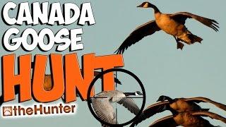 My Goose Setup | Canada Goose Hunt - theHunter 2015 PC Gameplay w/leeroy & Tyke