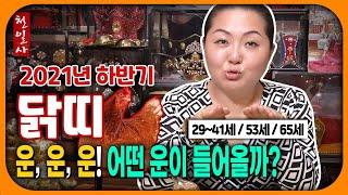 [운세] 재물운, 시험운, 승진운, 취업운 등등! 어떤게 가장 좋을까요? 닭띠 운세!