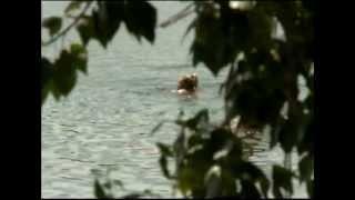 В Угличе утонула девочка
