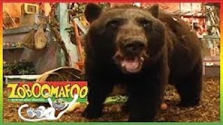 ▶ Zoboomafoo Full Episodes 132 - Bears - Zoboomafoo Full Episode - Animal Show for Kids