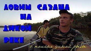 Рибалка восени на дикунів 2017 | боилы кукурудза пелец | HD