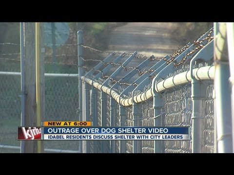 Outrage Continues Over Idabel Shelter Video