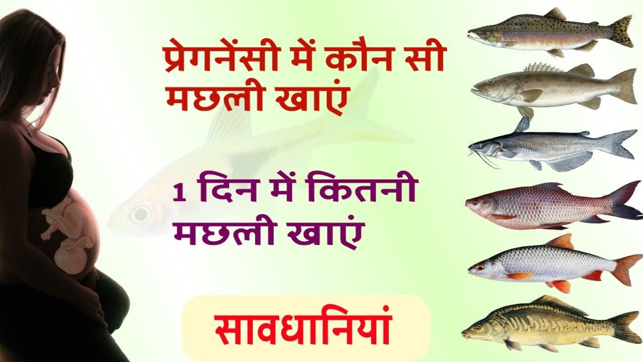 प्रेगनेंसी में कौन सी मछली खाना सुरक्षित है   Fish during Pregnancy