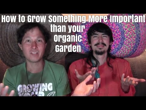 How to Grow Something More Important than your Organic Garden