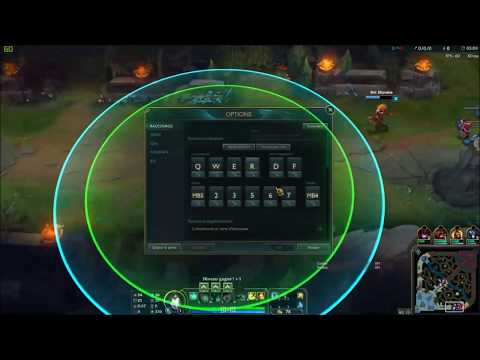 Bot scripts league Of Legends Quinn