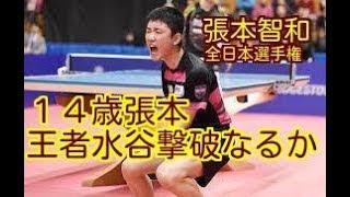 男子シングルス準決勝が行われ、ジュニア王者の中学2年、張本智和(1...