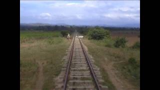 Cuba Steam Train 11