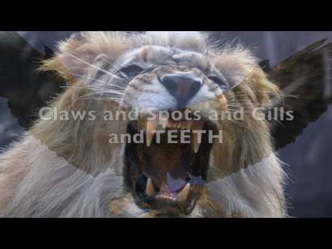 Animal Habitat Song!!