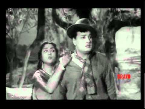 Thai Sollai Thattadhe | Oruthi Maganai | ஒருத்தி மகனாய்