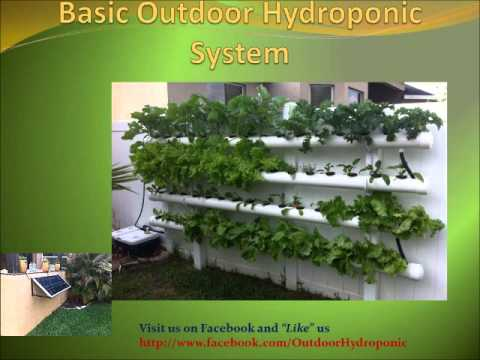 Diy Outdoor Hydroponic Grow For Beginners Youtube