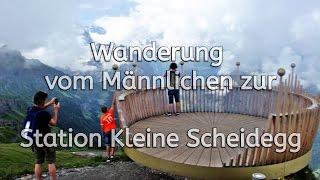 Swiss // Schweiz // Switzerland // Wanderung // Männlichen // Station Kleine Scheidegg