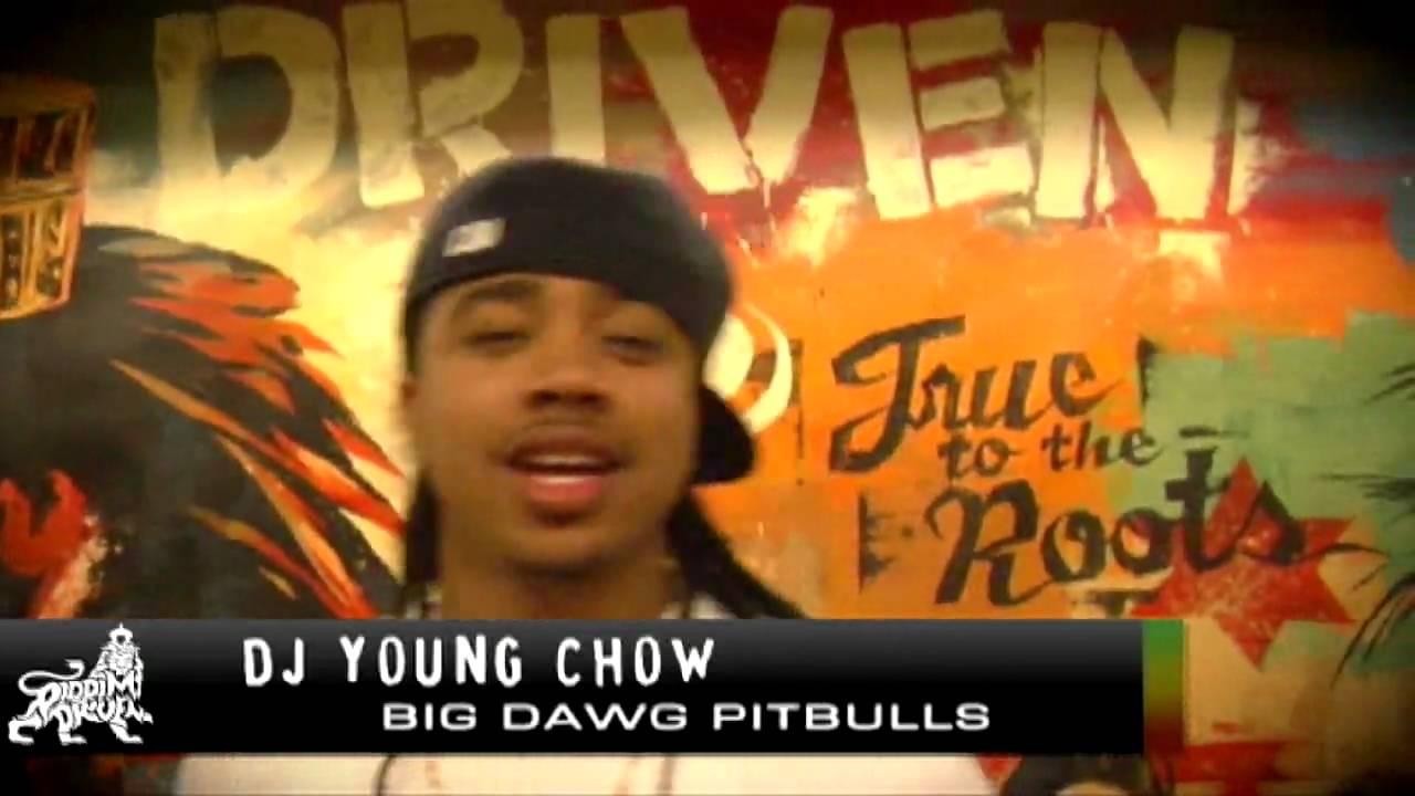 DJ Young Chow - Riddim Driven