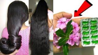 रात में 1 बार लगाके देखो बालो की लम्बाई इतनी बढ़ेगी बस कटवाते रह जाओगे / Fastest Hair Growth Formula