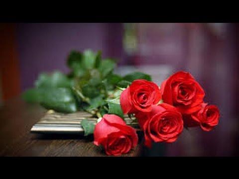 تفسير حلم رؤية الورد والزهور وقطف الازهار في المنام Youtube
