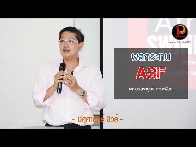ผลกระทบที่เกิดขึ้น หากไทยเกิดโรค ASF ในสุกร - ปศุศาสตร์ นิวส์