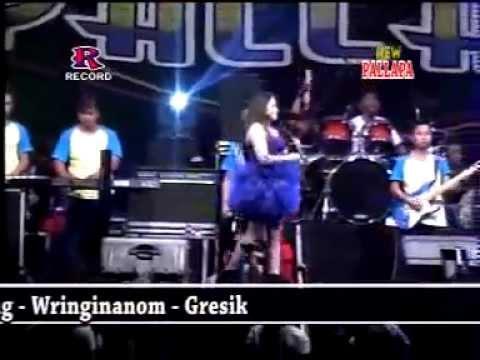 Tabah   Lilin Herlina   New Pallapa Live Terbaru Dracang Menganti