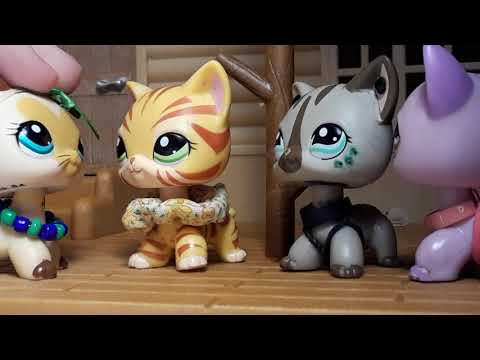 Lps: Shorthair party! (New years special)