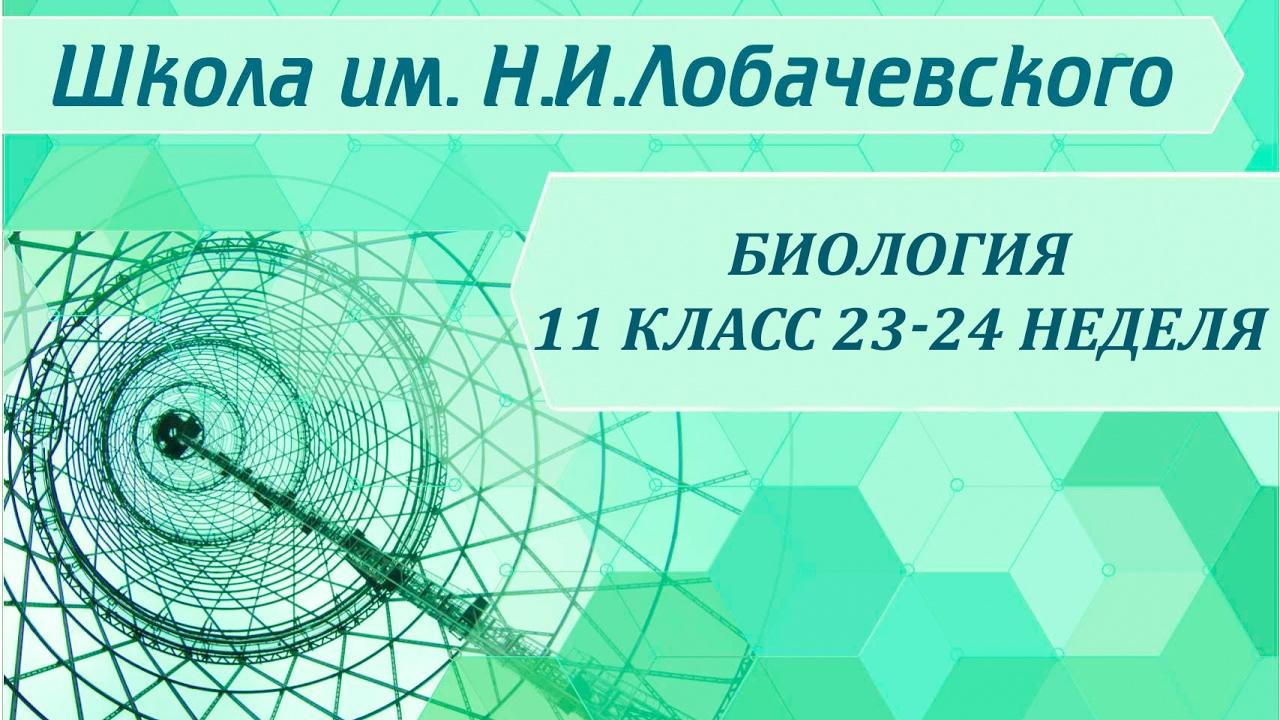 Биология 11 класс 23-24 неделя Закономерности действия экологических факторов