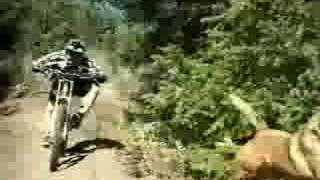 Cable cam extreme downhill mountain bike thumbnail