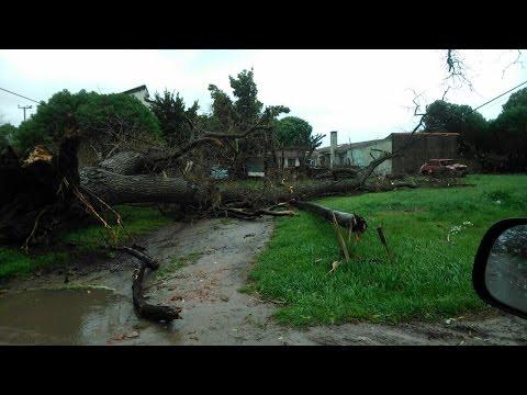 La furia del viento - Teleocho Informa - Canal 8 Mar del Plata