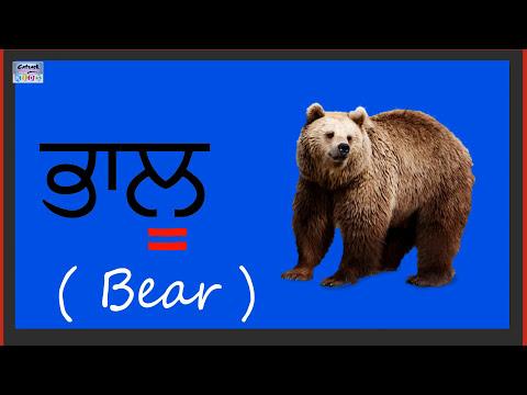 Learn Punjabi Language For Beginners | Punjabi Grammar Compilation (Vowels) With Clear Pronunciation