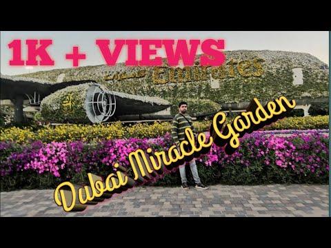 Dubai Miracle Garden 2020 – 2021