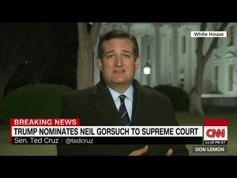 Sen. Ted Cruz: 'I think Judge Gorsuch is a home run...