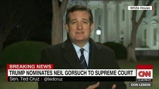 Sen  Ted Cruz  'I think Judge Gorsuch is a home run