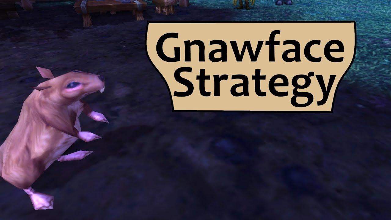 Gnawface Garrison Pet Battle Strategy Guide Youtube