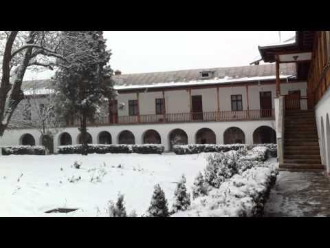 Peisaj de iarna mirific. Padurea, lacul si manastirea Cernica. 13-01-2013